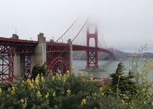Beneath the Bridge by Lisa Rodgers