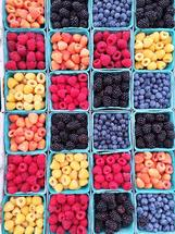 Farmer's Market Berries by Mackenzie Lynch