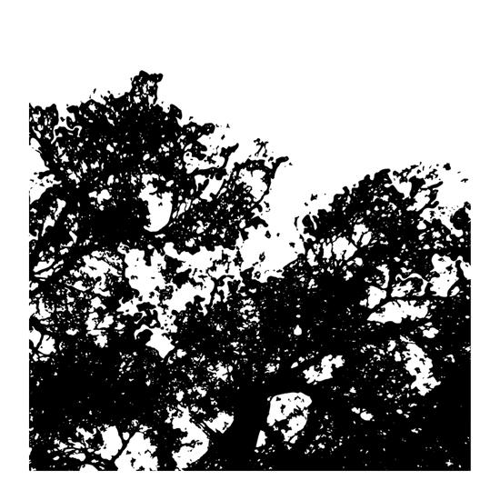 art prints - Black shapes by julia grifol designs