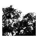 Black shapes by julia grifol designs