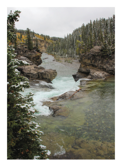 art prints - Elbow Falls From the Top by Wendy Dypolt