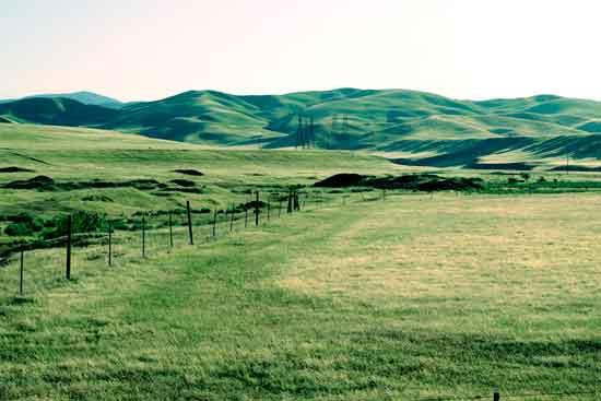 art prints - Rustic Pasture California by Dennis Landry