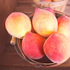 Peaches at a Peach Stand