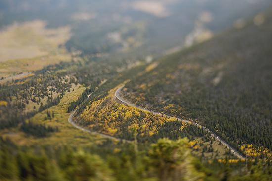 art prints - Trail Ridge Road by Brenda Landrum