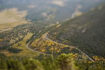 Trail Ridge Road by Brenda Landrum