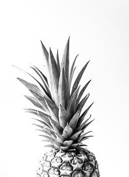 Pineapple Portriat