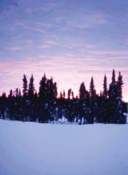 Sunset in Camo 1