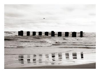 Waves and poles
