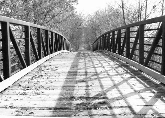art prints - Bridge in Autumn by Christine Rae
