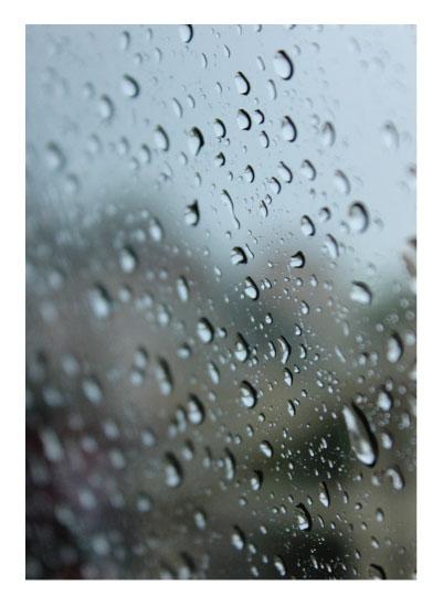 art prints - Rain in Spain by Madison McCormick