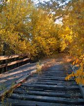 Bridge in Early Autumn by Jacie Morgan