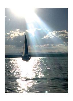 Shimmering Sail I