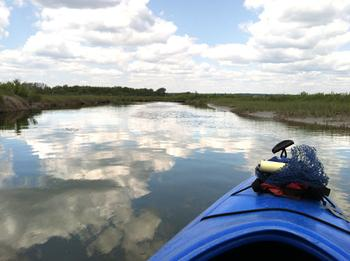 Kayaking the Marshes
