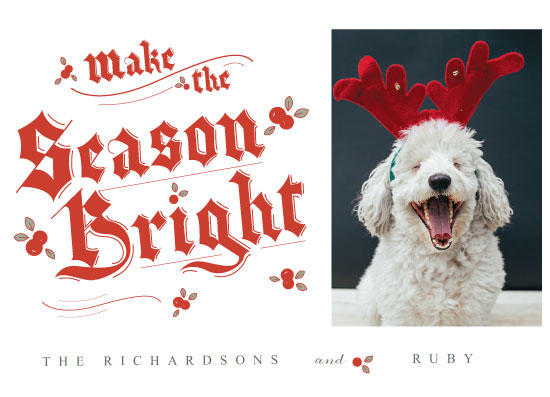holiday photo cards - A Bright Season. by Franklin OToole