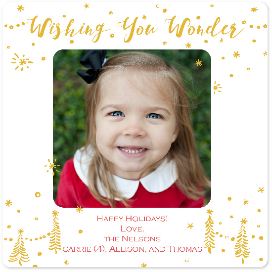 holiday photo cards - Wonderful Season by Leigh Jacobs