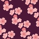 Sakura Iro by Diana Chen Kitthajaroenchai