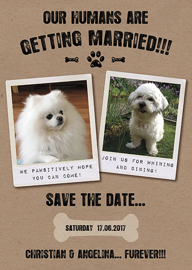 save the date cards - our humans are getting married - all in good fun by michael cheung