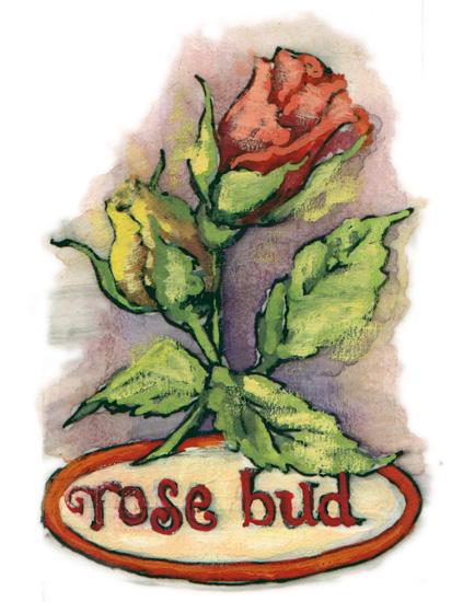 valentine's day - rosebud by Cleo Papanikolas