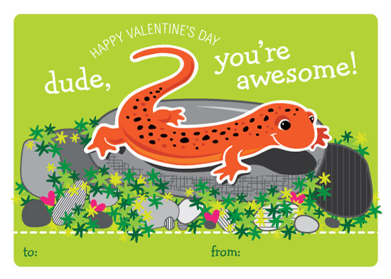 valentine's day - Dude, you're awesome! by Debra Cooper