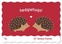 Hedgie Love by Jessica Ray