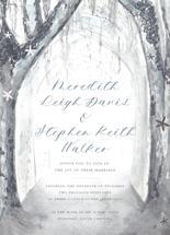 Wintry Wonderland by Meredith Walker