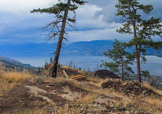 art prints - Raw Okanagan by Andriana