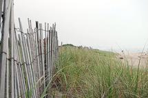 Hazy Beach by Jessie Baude