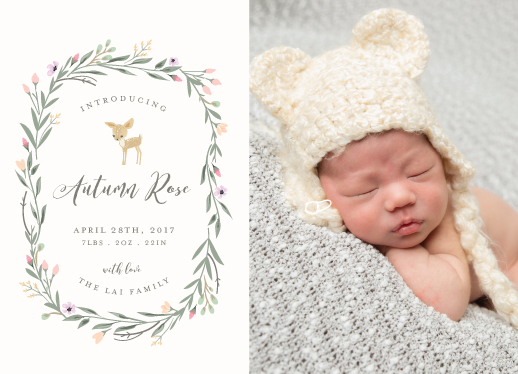 birth announcements - Little Deer by Susan Moyal