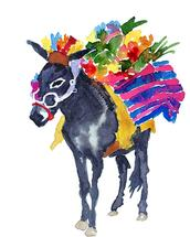 San Miguel Donkey by Clementine Studio