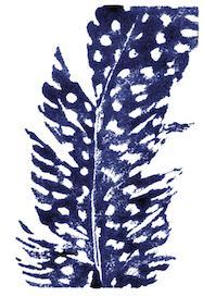 Indigo Feather I