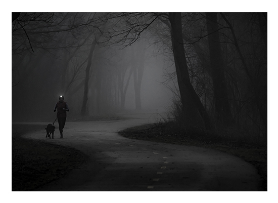 art prints - Fog Runner by Christopher Deau