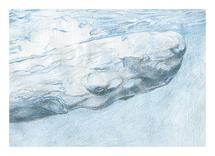 Blue Whale by Anna Mkhikian