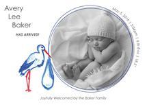 Look What the Stork Bro... by Laura Ann Trimble Elbogen