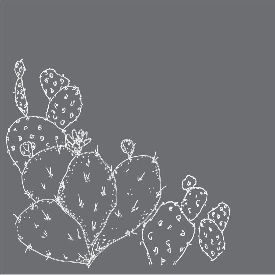 art prints - Night Cactus by Anna Liisa Moss