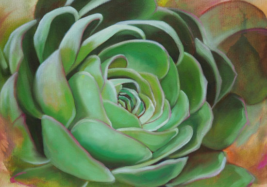 art prints - Succulent Beauty by Laura Dick