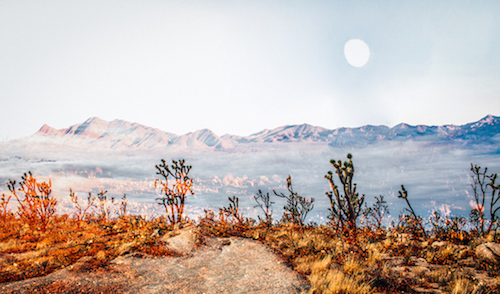 art prints - Desert Super Moon by Kate Baird
