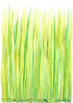 New grass in the sun