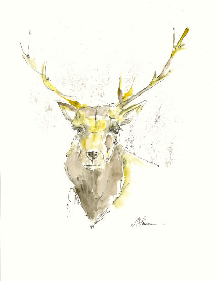 art prints - Elk by Larry Lawrence