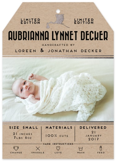birth announcements - Handcrafted Special Delivery by Avian by Design