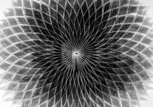 Folds:Star by Zander Lensch