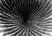 Folds:Vortex by Zander Lensch