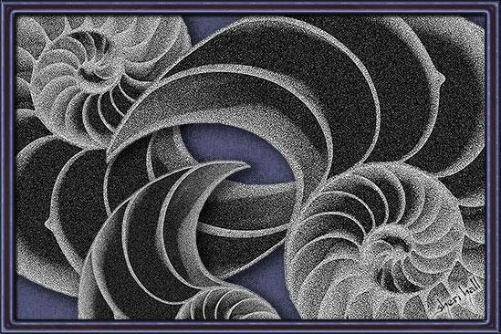 art prints - Nautili by Sheri C. Hall