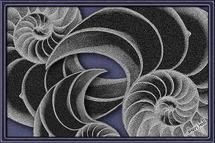 Nautili by Sheri C. Hall