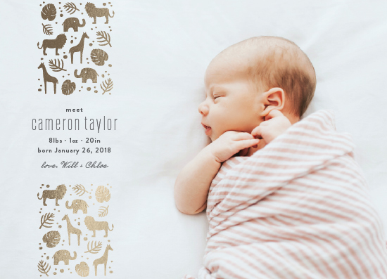 birth announcements - safari by Carolyn MacLaren