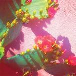 Mamacita by HayesTone