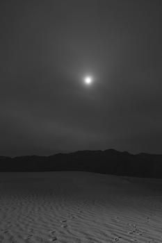Moonlit Footsteps