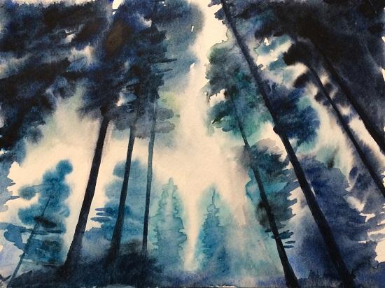 art prints - Tree top pines by Sarah J Wright