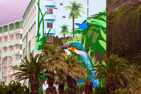 art prints - Beach Bird by Wonder Art