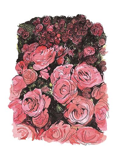 art prints - Red Roses by Alexandra Betzler