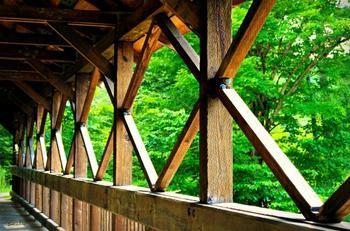 Covered Bridge X